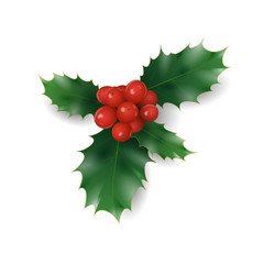 Holly branch with red berries Christmas symbol. Holiday traditional decoration New Year wreath part green leaves. Isolated on white realistic 3d vector illustration