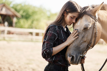 Portait of young female broodmare petting a new horse on a ranch on a sunny summer day.