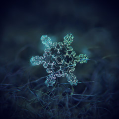 Real snowflake macro photo: star plate snow crystal with six short arms, asymmetrical central hexagon and complex inner pattern. Snowflake glitter on dark blue textured background in cold light.