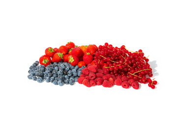 Strawberries, blueberries, red currants and raspberries in a bunch.
