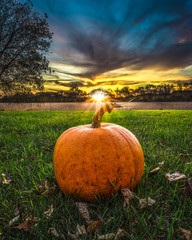 Pumpkin on Grass with Leaves and Sunset