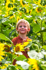 boy in sunflower field smiling