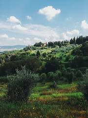 Rural Estate in Beautiful Lush Tuscan Countryside