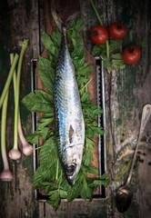 Raw stylish fish ready to cook