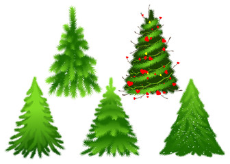 Set green Christmas fir pine tree