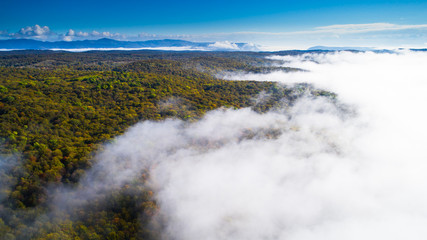Forested mountain slope in low lying cloud with the autumn forest shrouded in mist in a scenic aerial view