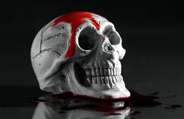 zakrwawiona czaszka