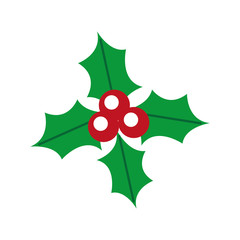 christmas holly berry leaves decoration ornate