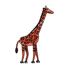 colored  giraffe doodle over white background  vector illustration