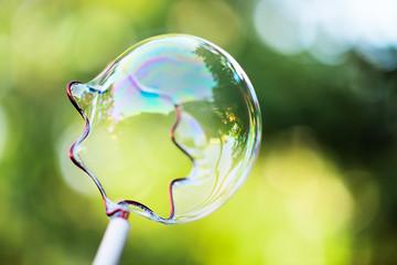 Bubbles in a garden in summer