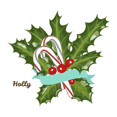 Christmas composition of holly and candy. Vector illustration.