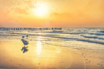 Fototapete - Ostseeküste Strand am Abend