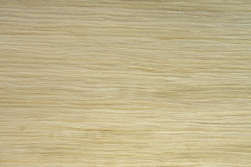 Backdrop or background wooden. Veneer white elm tree.