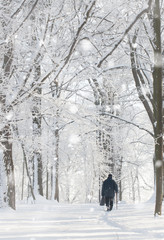 loneliness in winter- a lonely senior man walking through the park