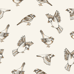 Beautiful seamless pattern with flying and sitting sparrows on light background. Backdrop with cute small city bird. Colored vector illustration for wallpaper, textile print, wrapping paper.