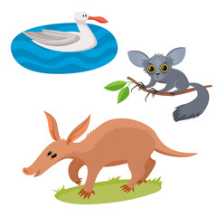 Set of wild animals in cartoon style, vector illustration of albartoss, aardvark and aye-aye