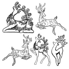 Set of Reindeer isolated on white background. Deer holiday symbol. Decoration design for Xmas and Christmas cards, banners and flyers. Luxury hand drawn New Years ornate element for tree decor. Vector