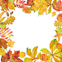 Frame of autumn leaves. Watercolor.