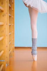 Ballet dancer exercising