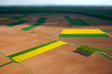 Aerial photo of a fertile cultivated field during spring season