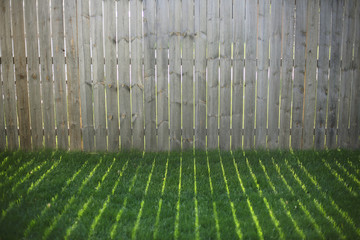 Rays Of Sunshine Through A Fence Create Shadows On A Grassy Backyard