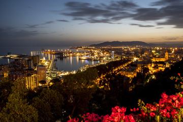 Panorama of Malaga at night