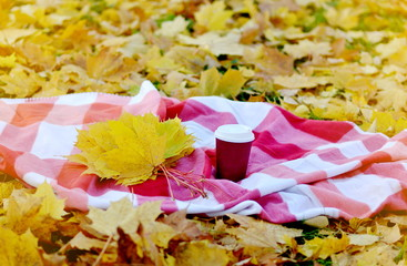 Basket with Take Away Coffee Cup Yellow Leaves Picnic Golden  Autumn Time Rest Background Sunlight