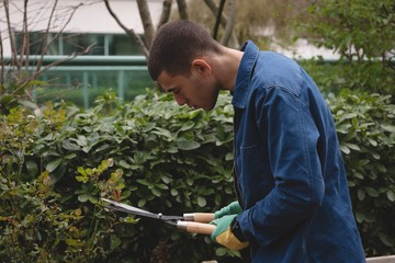 Man cutting the hedges in the garden