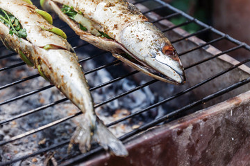 Grilled fish with spices on fire close up. Grilling fish  dorado on campfire