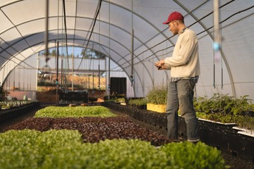 Farmer using digital tablet in greenhouse