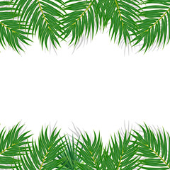 Tropical leaves vector on white background
