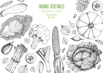 Vegetables top view frame. Farmers market menu design template. Organic vegetables food poster. Vintage hand drawn sketch vector illustration. Line art graphic. Engraved style.