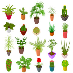 Green Plants in Pot Set Icons 3d Isometric View. Vector