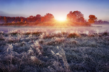 Morning autumn landscape on frosty meadow at sunrise. Hoarfrost on the grass.