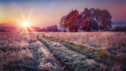 Frosty autumn landscape at sunrise on meadow. Colorful scenery autumn with hoarfrost on the grass and bright sun on horizon. Fall nature.