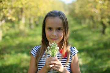 A Pretty Girl Holds Freshly Picked Flowers In A Sunny Autumn Apple Orchard