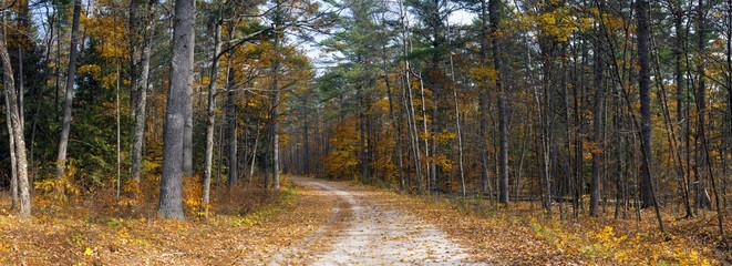 Bon Echo Ontario Landscape Fall Autumn Background Hiking