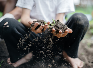 Child plays with dirt
