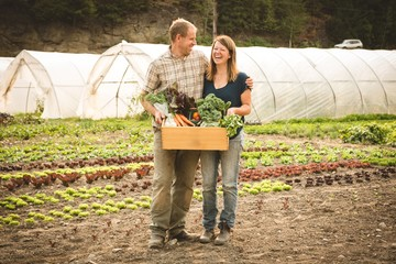 Mature couple holding crate of vegetables