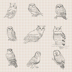Seamless texture with painted owls on a background of a sheet of paper