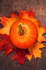 Harvest Background with pumpkins. Orange halloween pumpkins on dark planks, holiday decorations  close up .