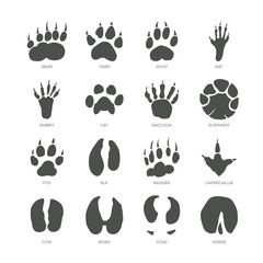 Animal trails - modern isolated vector set