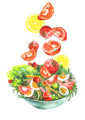 A plate of vegetable salad, tomatoes, greens, lemon, cucumbers, onions, olives, eggs, dill, parsley, cherry tomatoes. Handmade drawing on white isolated background.