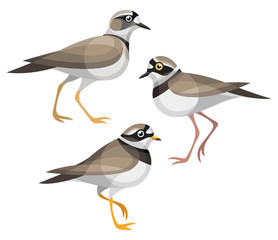 Stylized Birds - Plovers