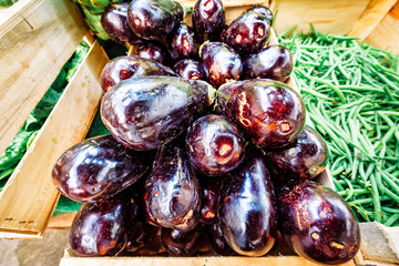 Aubergine or eggplants and other vegetables placed on the shelf in grocery market.
