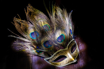 carnival mask with peacock feathers. light brush