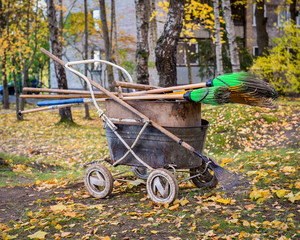 Wheelbarrow and rake for harvesting fallen leaves