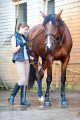 Pretty young girl owner washing her favorite bay horse's legs