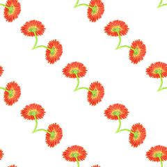 Seamless pattern with marigold flower