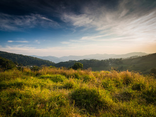 The sun light is shining on the little green grass uphill in the northern part of Thailand, Mon Jong, Chiangmai.